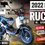Skuter Honda Ruckus 49cc 2022 Review Spesifikasi, Perubahan, Fitur + Keliling    NPS 50